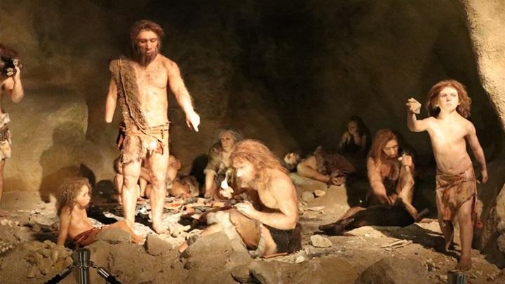 https://www.zagorje.com/Resource/SmartSize?url=%257e%252fCms_Data%252fContents%252fzagorjecom%252fFolders%252fSlike%252f%257econtents%252fQSRJRPRSF9UHM86R%252fmuzej-krapinskih-neandertalaca-ivekova-slika.jpg&width=720&height=405&vAlign=center&hAlign=center&quality=95
